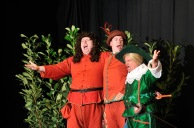Sir Toby Belch (Andy Noakes), Feste (Mark Nurdin) and Sir Andrew Aguecheek (John O'Sullivan)